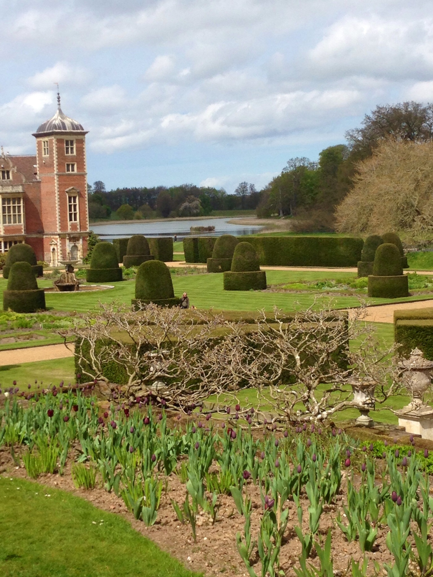 Topiary garden at Blickling Hall, Norfolk