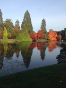 autumn colour at Sheffield Park