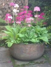 recycled garden planter idea!