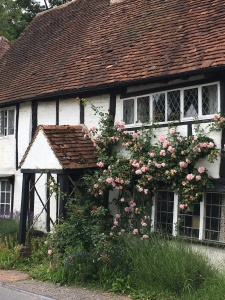 Shere cottage