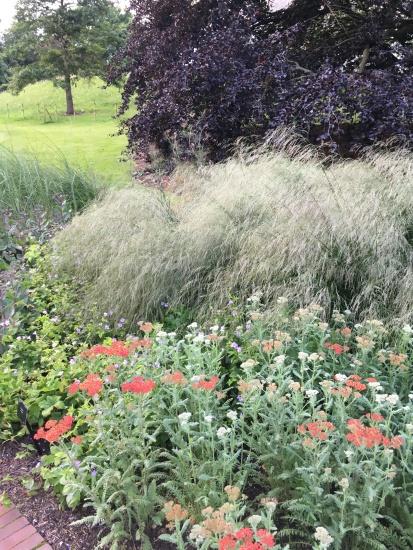 Textured planting at Kew