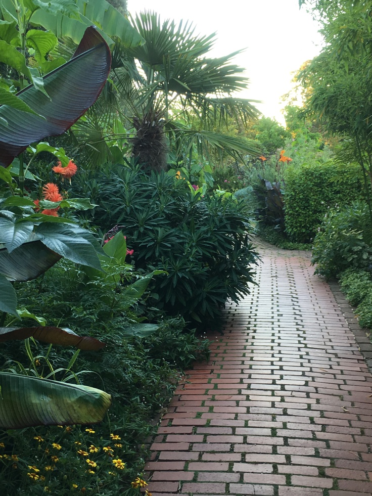 brick path and tropical planting