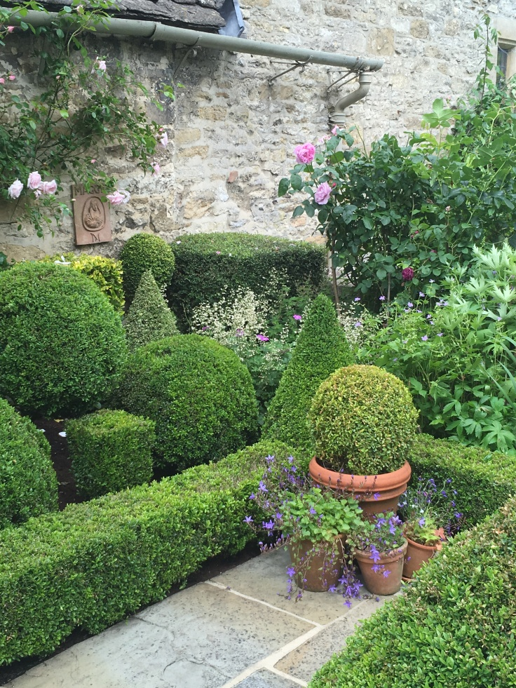 topiary in small garden with pots