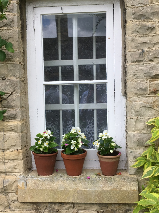 trio of pots on a windowsill