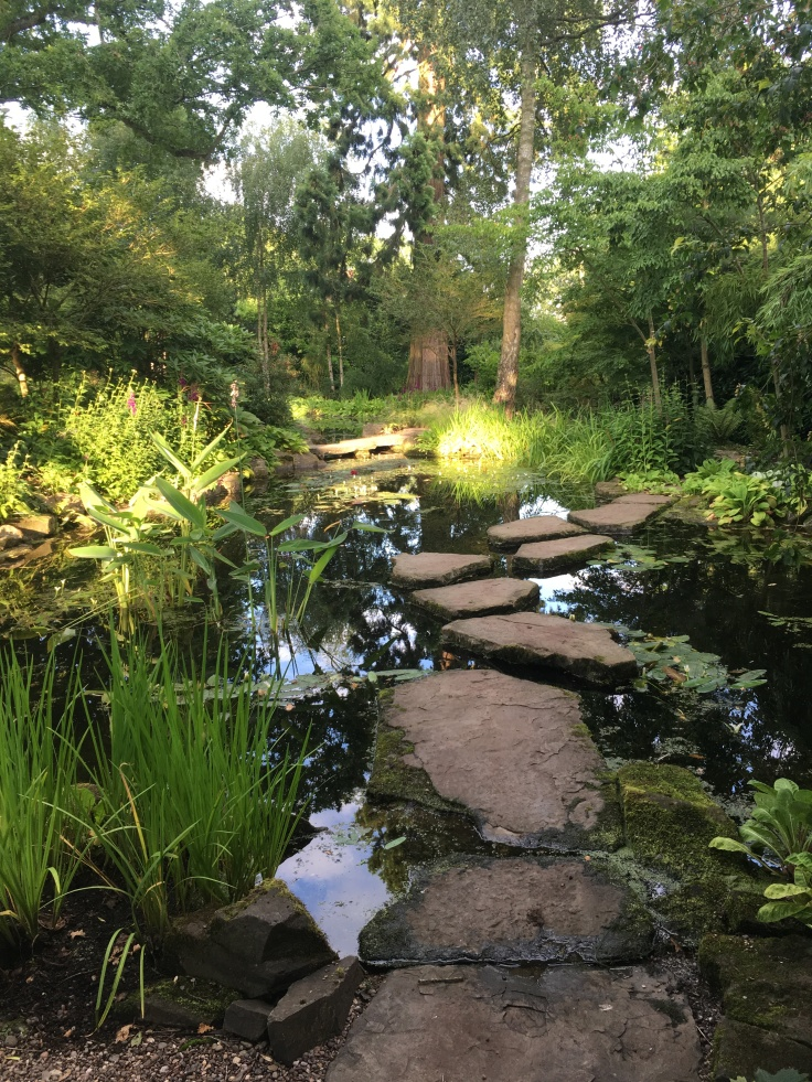 stepping stones across pond with trees and plants