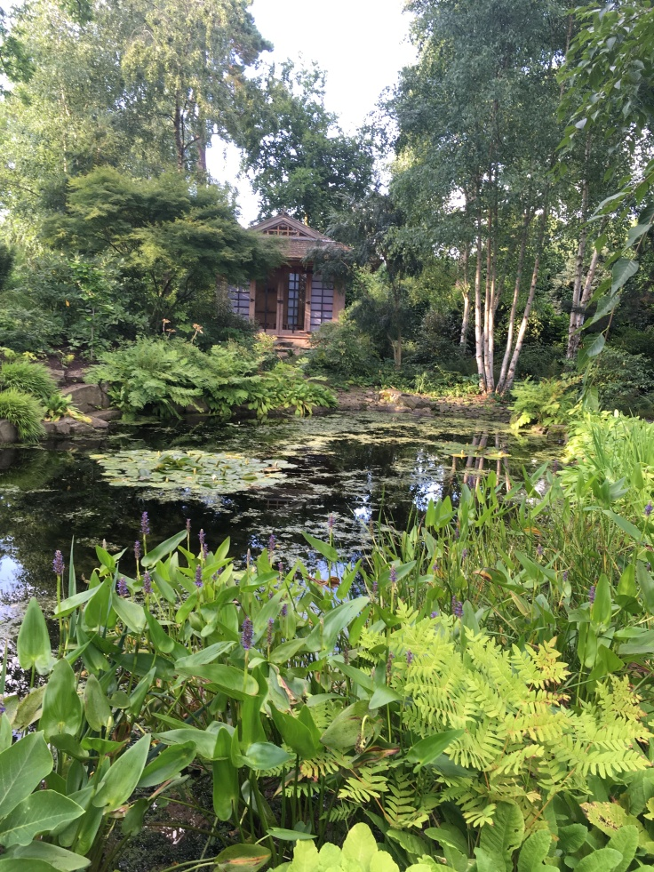 Japanese tea house overlooking the pond