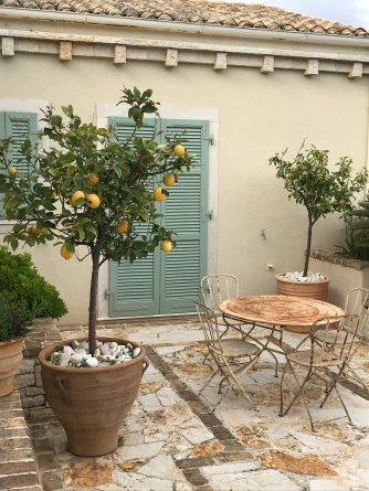 Courtyard garden with lemon trees