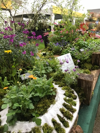 Hardy's Cottage Garden Plants stand
