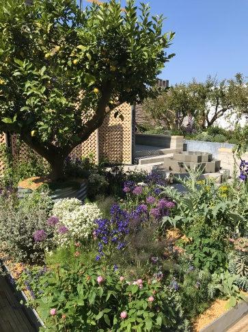 The thought-provoking Lemon Tree Trust Garden