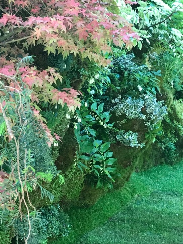 The living wall behind the O-mo-te-na-shi no NIWA garden