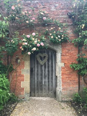 Climbing roses over the garden door