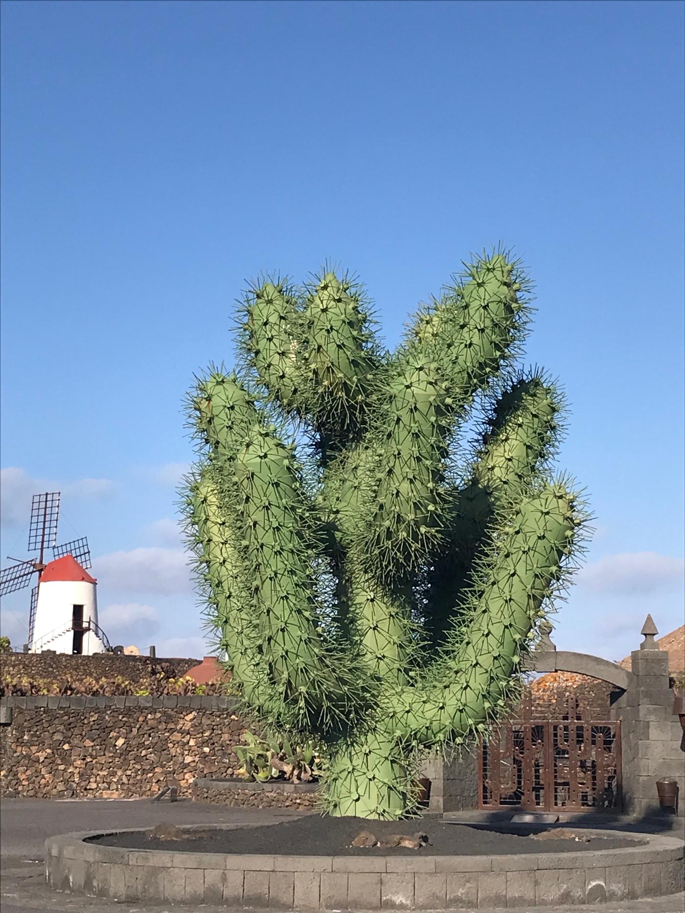 le jardin de cactus lanzarote - Le Jardin