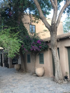 Bouganvillea at the entrance to Dar al Hossoun