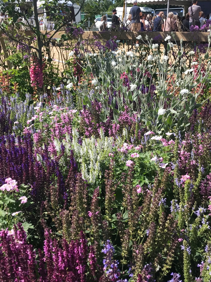 A tapestry of colour in this show garden at CPH garden show 2019
